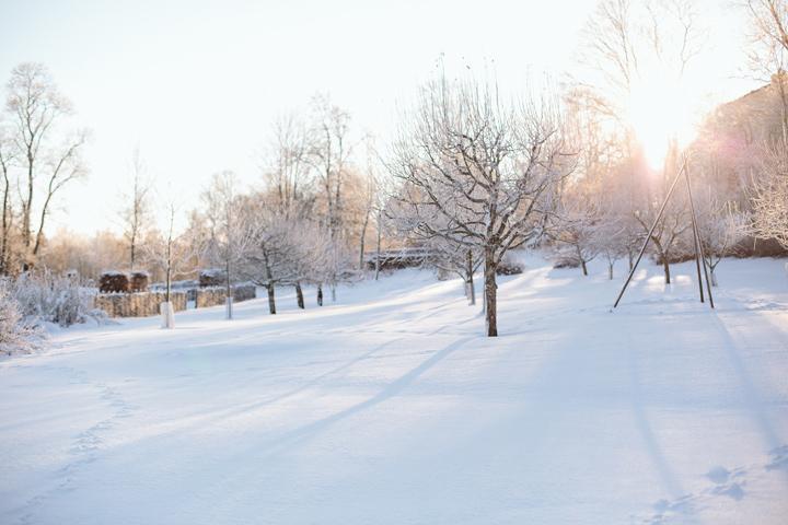 Vintern vid Karlslund